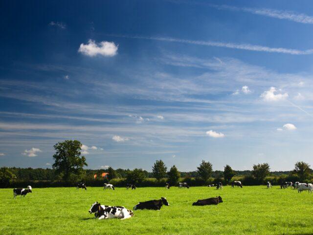 Imagen destacada de El camino hacia la agricultura circular en la práctica