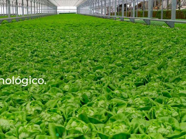 AgroIberia uitgelichte afbeelding