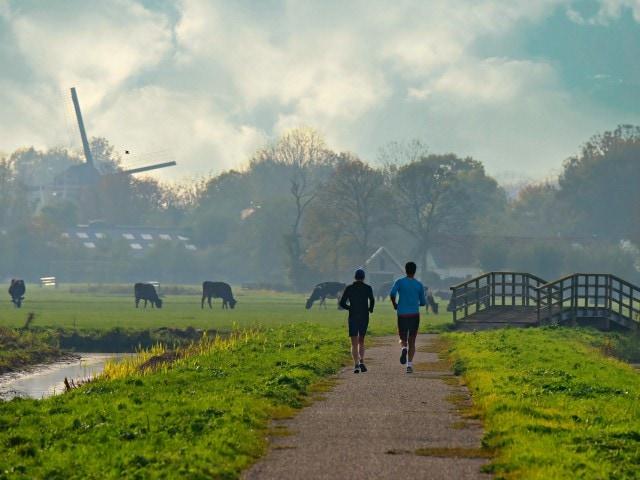 Imagen destacada de Países Bajos, entre los países más felices de Europa